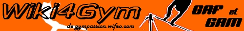 gym wiki atelier masculin féminin agrès exercices gymnastique